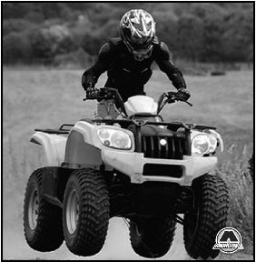 Квадроциклы Baltmotors ATV 500 MAX