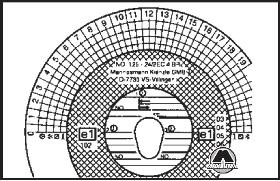 Заполнение наружного круга на обороте карты DAF XF95