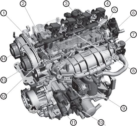 1.6L EcoBoost Ford Transit Connect