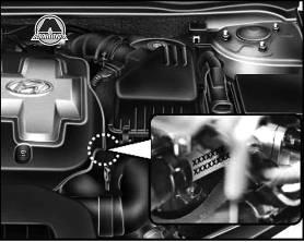 hyundai elantra где находится номер двигателя