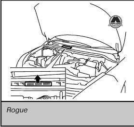 Идентификационная табличка Nissan X-Trail Rogue